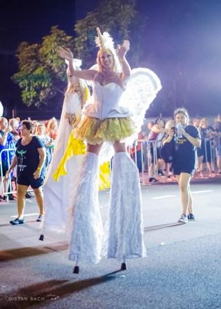 distanbach-Mardi Gras 2016-83