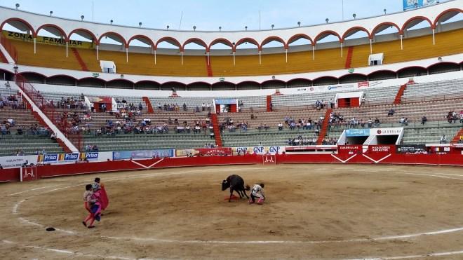 Matador - Right in the sack