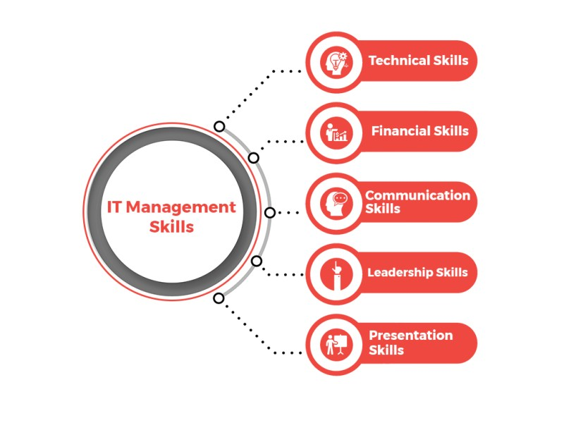 IT management skills