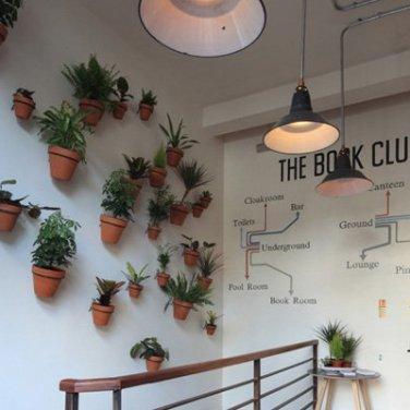 the book club | distantlocals.com