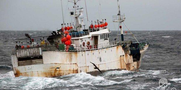 Las costas uruguayas: nido de la pesca ilegal en el Cono Sur