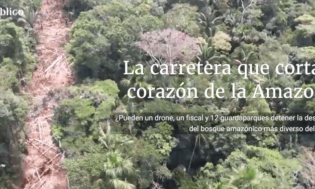 Especial de Ojo Público: la ilegal carretera en la Amazonia que nadie ha podido detener