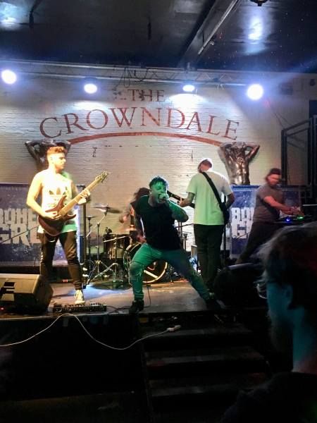 Bohemian Grove live @ Binfest 2017. Photo Credit: Sophie Maughan