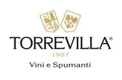 logo-torrevilla