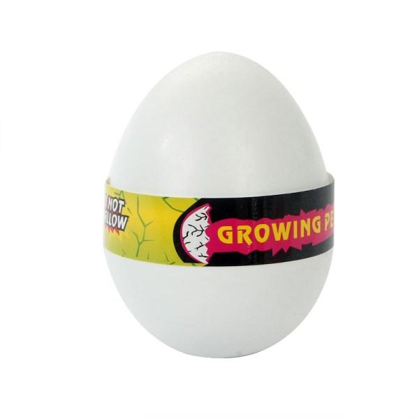 Charm Magical Egg