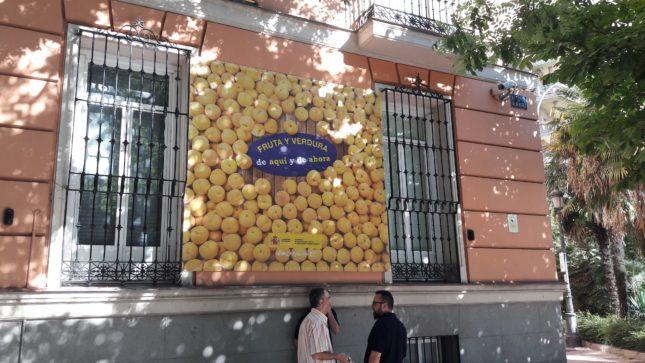El Gobierno activa campaña para promover el consumo de fruta y verdura