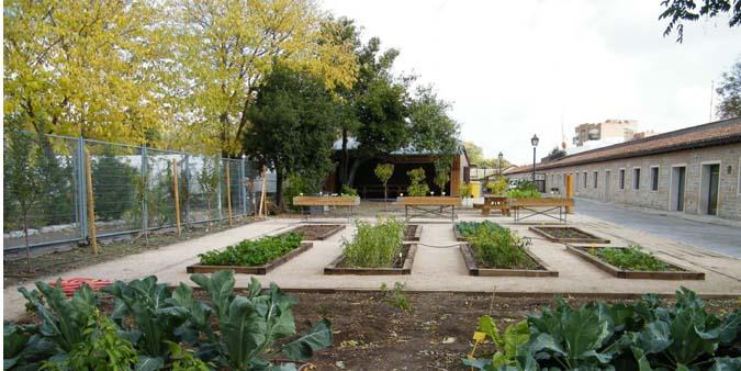 Avanzan proyectos de huertos urbanos y vecinales en varias zonas de España para promover una alimentación sana