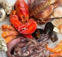 Los españoles son los europeos con más mercurio en su organismo