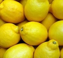 Descenso de la cosecha de limón español del 15%