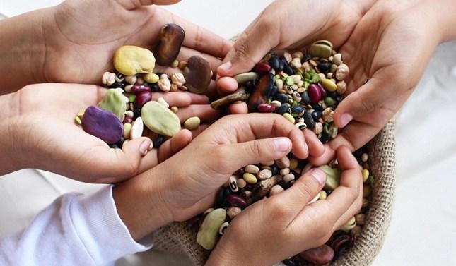 En el Día Mundial de las Legumbres destacan su valor nutricional
