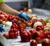 Alvalle producirá este verano más de 25 millones de litros de gazpacho desde su nueva planta