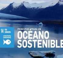 Grupo Calvo refuerza su Compromiso Responsable por un océano sostenible