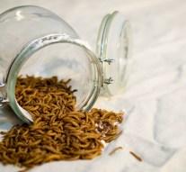 Bruselas autoriza por primera vez el consumo de un insecto como alimento
