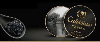 idée cadeau entreprise, idée cadeau fin d'année, soirée caviar, soirée découverte caviar lyon, dégustation caviar lyon