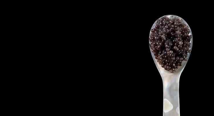 caviar class lyon, hotel de ville lyon, er baretto, restaurant italien, dégustation caviar italien lyon, distrilux, vignole, ines de bigouse, gastronomie italienne lyon