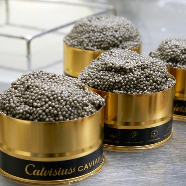 caviar beluga lyon, prix beluga, commande beluga, déguster beluga