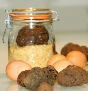 conservation truffes fraiches bocale verre riz et oeufs frigo