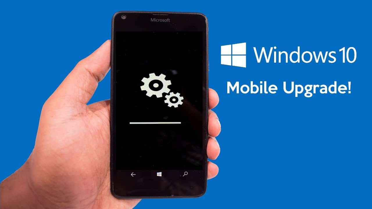 Microsoft got no Love for their Windows Phone community