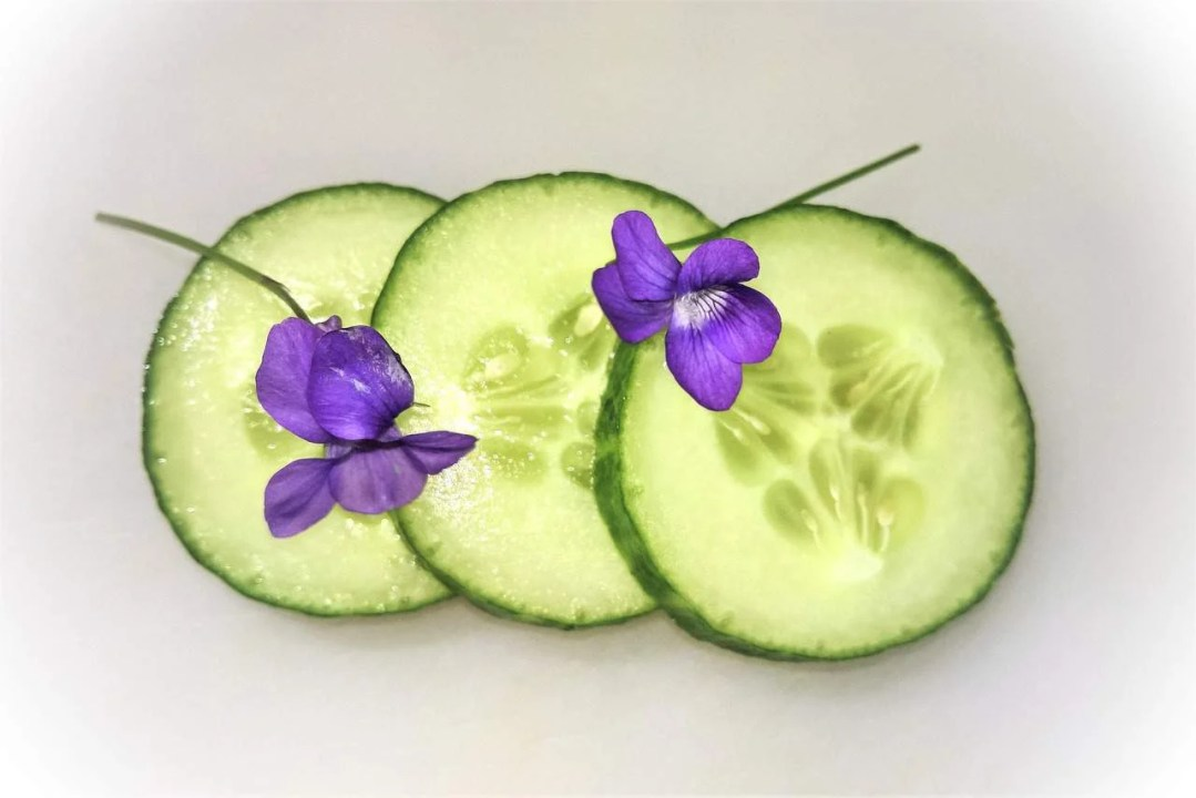 use cucumber in your summer drinks