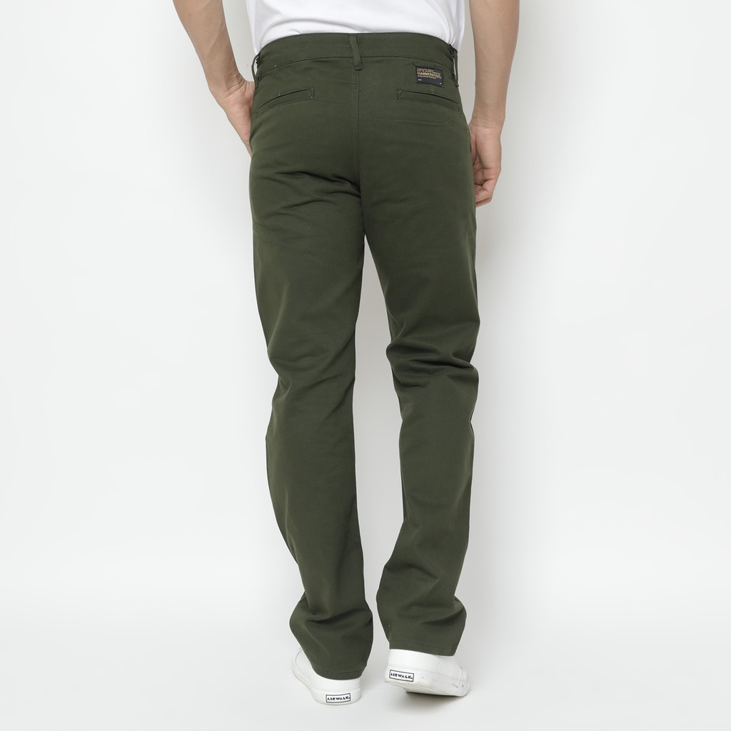Hammerstout - Prime Olive - Chino