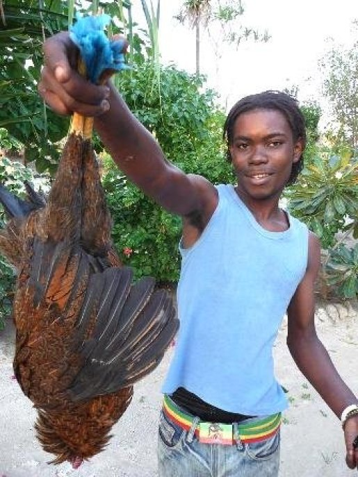 Mussa skal lage middag med lokal kylling