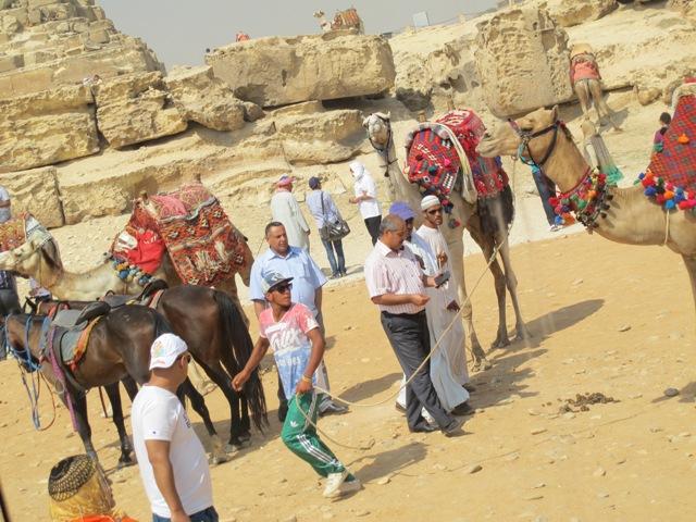 Giza kaos til blogg
