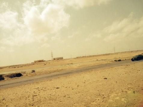 Landskapet er ganske tørt og karrig og lite variert, men ørken er ørken