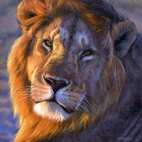 Luani, simboli i fuqise
