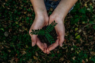 5 free recycling programs