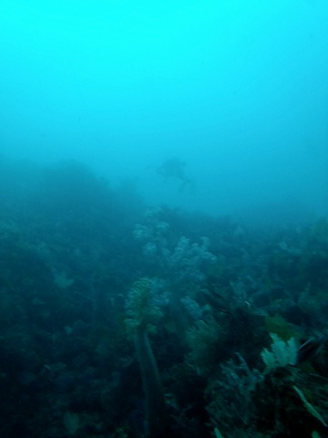 lab20111012 (5)