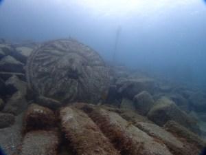 獅子浜でダイビング