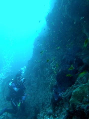 20110723nishiblo (2)
