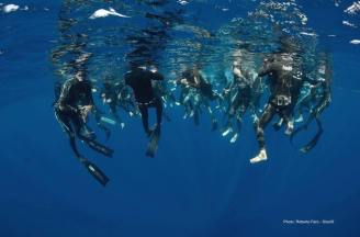 Freediving Workshop in Malta