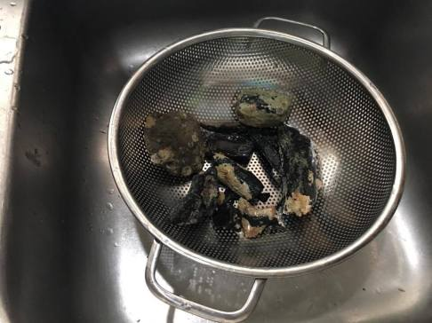 I rinsed off my fossils in a strainer in the sink.