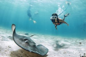Girl diving with stingray in blue water on NEMO by BLU3