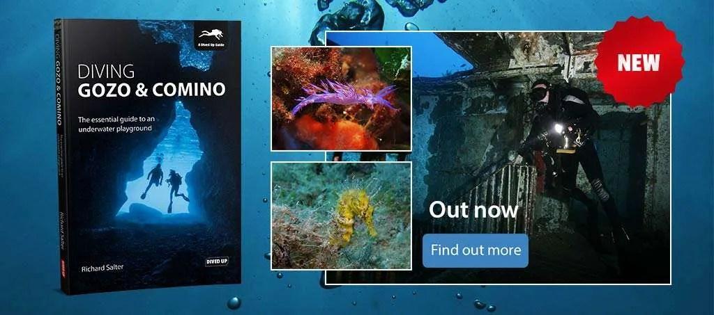 Diving Gozo & Comino by Richard Salter