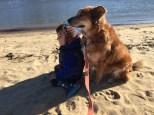 Dog included at grandparents' resort