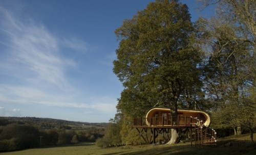Blue_forest_ecoperch_tree_house_accommodation_1_gallery_image