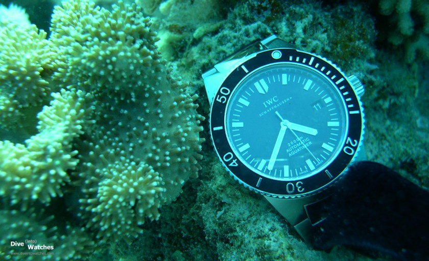 IWC_GST_Aquatimer_2000_Front_Submerged_Corall