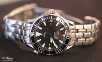 Omega_Seamaster_Professional_Diver_300_Black_Dial_HTG_Meeting_2017