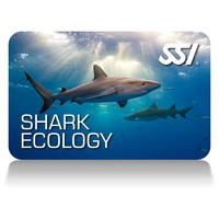 shark-ecology