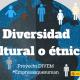 Diversidad cultural o étnica, DIVEM #Empresasquesuman, RSE, sostenibilidad, empresas, desarrollo