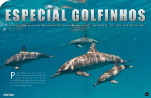 divemag71w_Page_15