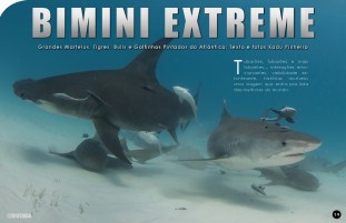 divemag73_Page_015