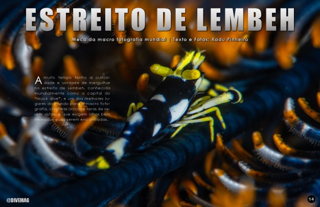 divemag81_Page_15