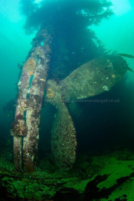 Meldon, SS Meldon, S.S Meldon, Wreck, Loch Buie, Mull