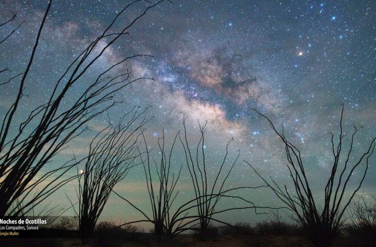 Ganadores del V Concurso Nacional de Fotografía de Naturaleza