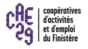 Les Coopératives d'Activités et d'Emploi du Finistère