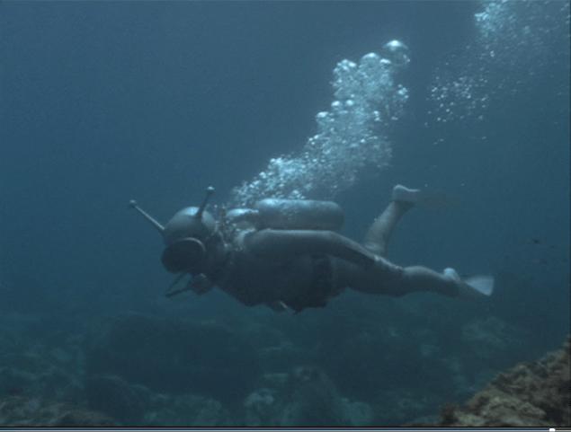 モルの潜水シーン