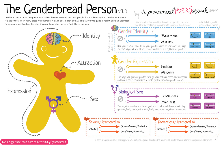 Genderbread Person 3 3 Asociacion Diversah